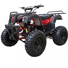 ATV 200B Quad 4 Wheelers Utility ATV Full Size